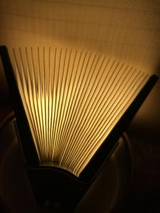 Fan of light.